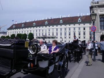 Viele Gäste unternahmen eine gemütliche Fiakerfahrt durch Wien