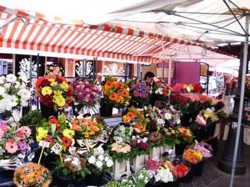 einer der vielen bunten Blumenstände in Nizza